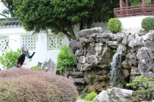 Arsitektur di dalam Japanese Garden